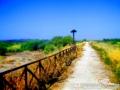 Sicily Bike Adventure 02