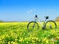 sicily-bike-tourist-service