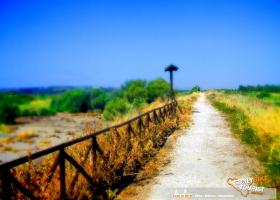 Simeto in MTB - © Sicily Bike Tourist Service 16